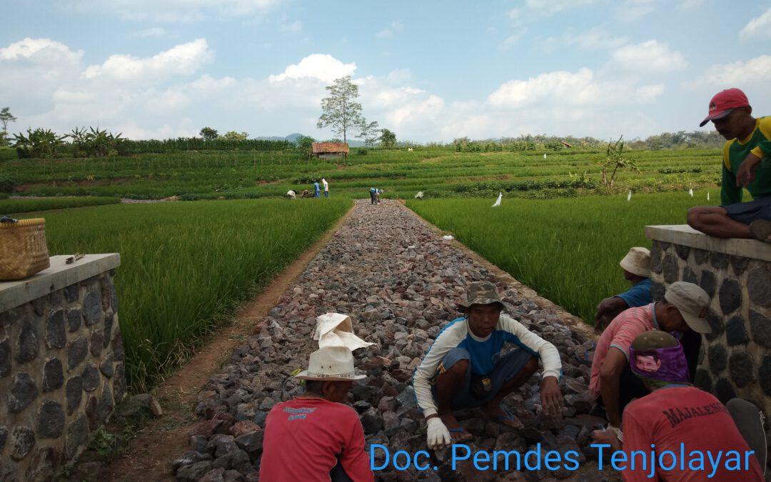 Sepanjang 500 Meter Jalan Usaha Tani Desa Tenjolayar Sudah Pengerasan